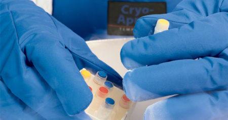 Tempshield Kryohandskar - Cryo-Gloves®